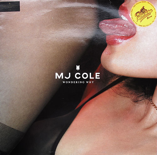 MJ Cole - Wondering Why