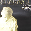 Sharam Jey - Push Your Body