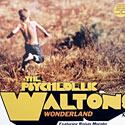 The Psychedelic Waltons - Wonderland